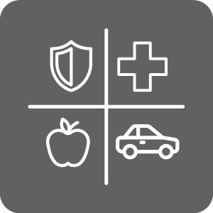 Campus Services icon of badge, apple, car and cross
